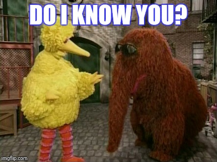 Big Bird And Snuffy | DO I KNOW YOU? | image tagged in memes,big bird and snuffy | made w/ Imgflip meme maker