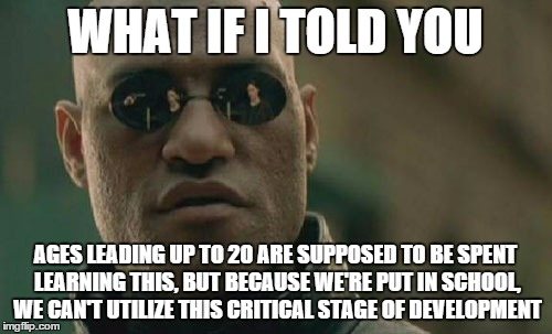 Matrix Morpheus Meme | WHAT IF I TOLD YOU AGES LEADING UP TO 20 ARE SUPPOSED TO BE SPENT LEARNING THIS, BUT BECAUSE WE'RE PUT IN SCHOOL, WE CAN'T UTILIZE THIS CRIT | image tagged in memes,matrix morpheus | made w/ Imgflip meme maker