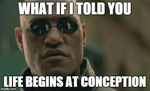 Matrix Morpheus Meme | WHAT IF I TOLD YOU LIFE BEGINS AT CONCEPTION | image tagged in memes,matrix morpheus | made w/ Imgflip meme maker