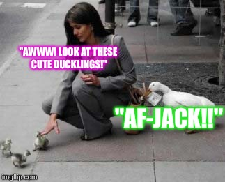 "I Guess Insurance Doesn't Pay Like It Used To.... | ""AWWW! LOOK AT THESE CUTE DUCKLINGS!"" ""AF-JACK!!"" 