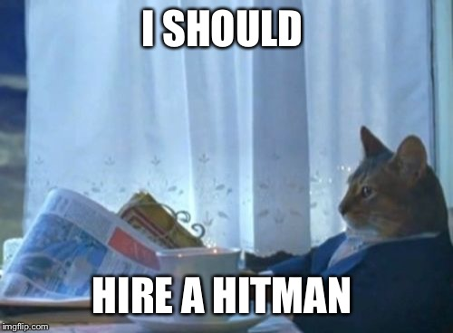 I Should Buy A Boat Cat Meme | I SHOULD HIRE A HITMAN | image tagged in memes,i should buy a boat cat | made w/ Imgflip meme maker