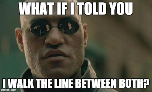 Matrix Morpheus Meme | WHAT IF I TOLD YOU I WALK THE LINE BETWEEN BOTH? | image tagged in memes,matrix morpheus | made w/ Imgflip meme maker