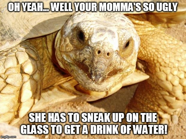 Turtle Joanna | OH YEAH... WELL YOUR MOMMA'S SO UGLY SHE HAS TO SNEAK UP ON THE GLASS TO GET A DRINK OF WATER! | image tagged in turtle joanna | made w/ Imgflip meme maker