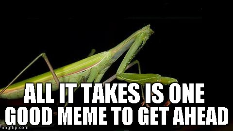 Never give up...anyone can make the front page at anytime. It only takes one great meme to get noticed. | ALL IT TAKES IS ONE GOOD MEME TO GET AHEAD | image tagged in headless mantis,mantis,insects,praying mantis,funny | made w/ Imgflip meme maker