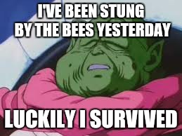 Super Kami Guru Allows This | I'VE BEEN STUNG BY THE BEES YESTERDAY LUCKILY I SURVIVED | image tagged in memes,super kami guru allows this | made w/ Imgflip meme maker