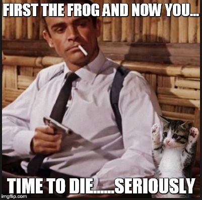 FIRST THE FROG AND NOW YOU... TIME TO DIE......SERIOUSLY | image tagged in connery | made w/ Imgflip meme maker