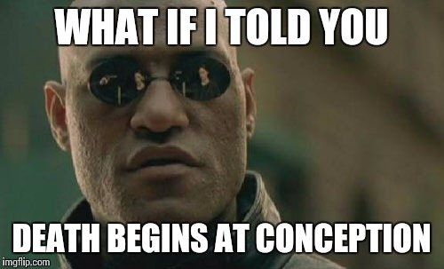 Matrix Morpheus Meme | WHAT IF I TOLD YOU DEATH BEGINS AT CONCEPTION | image tagged in memes,matrix morpheus | made w/ Imgflip meme maker