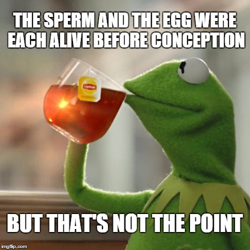 But Thats None Of My Business Meme | THE SPERM AND THE EGG WERE EACH ALIVE BEFORE CONCEPTION BUT THAT'S NOT THE POINT | image tagged in memes,but thats none of my business,kermit the frog | made w/ Imgflip meme maker