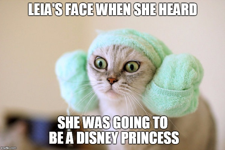 LEIA'S FACE WHEN SHE HEARD SHE WAS GOING TO BE A DISNEY PRINCESS | made w/ Imgflip meme maker