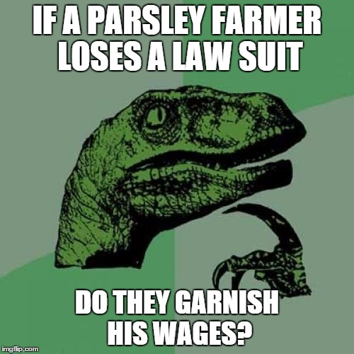 Philosoraptor Meme | IF A PARSLEY FARMER LOSES A LAW SUIT DO THEY GARNISH HIS WAGES? | image tagged in memes,philosoraptor | made w/ Imgflip meme maker