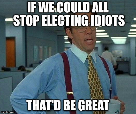 That Would Be Great Meme | IF WE COULD ALL STOP ELECTING IDIOTS THAT'D BE GREAT | image tagged in memes,that would be great | made w/ Imgflip meme maker