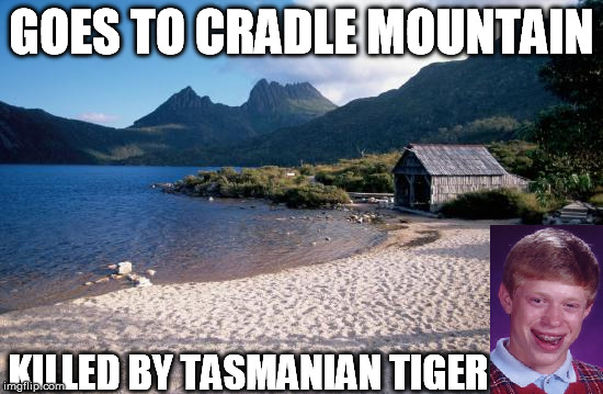 Bad Luck Holiday | GOES TO CRADLE MOUNTAIN KILLED BY TASMANIAN TIGER | image tagged in bad luck brian,australia,extinct | made w/ Imgflip meme maker