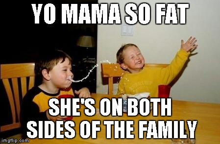 Yo Momma So Fat | YO MAMA SO FAT SHE'S ON BOTH SIDES OF THE FAMILY | image tagged in yo momma so fat | made w/ Imgflip meme maker