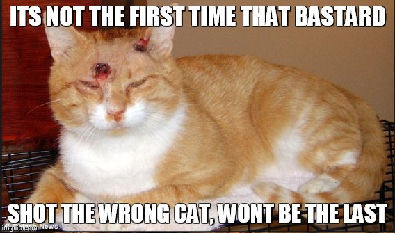 ITS NOT THE FIRST TIME THAT BASTARD SHOT THE WRONG CAT, WONT BE THE LAST | made w/ Imgflip meme maker