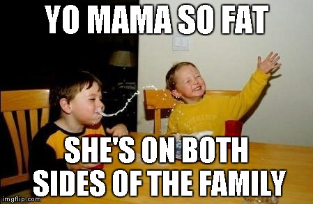 yo mama so fat | YO MAMA SO FAT SHE'S ON BOTH SIDES OF THE FAMILY | image tagged in yo mama so fat | made w/ Imgflip meme maker