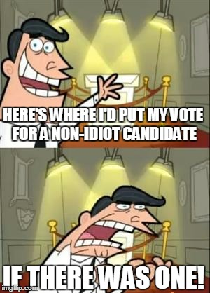 HERE'S WHERE I'D PUT MY VOTE FOR A NON-IDIOT CANDIDATE IF THERE WAS ONE! | made w/ Imgflip meme maker