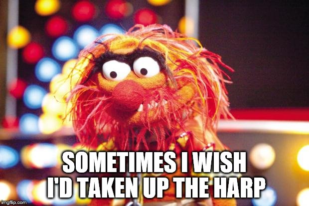 Don't judge a book by it's cover | SOMETIMES I WISH I'D TAKEN UP THE HARP | image tagged in animal,muppet,muppets | made w/ Imgflip meme maker