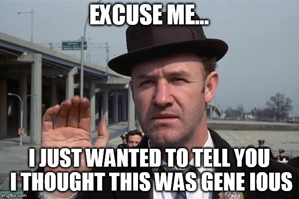 hackman | EXCUSE ME... I JUST WANTED TO TELL YOU I THOUGHT THIS WAS GENE IOUS | image tagged in hackman | made w/ Imgflip meme maker