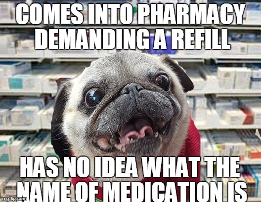 pharmacy pug demands medication | COMES INTO PHARMACY DEMANDING A REFILL HAS NO IDEA WHAT THE NAME OF MEDICATION IS | image tagged in pharmacy pug,pills,crazy pills,pharmacymemes | made w/ Imgflip meme maker