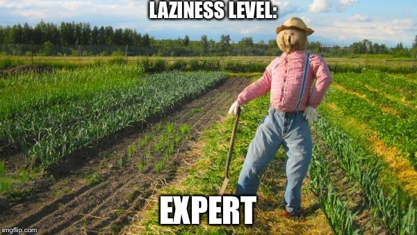 Farming for noobs | LAZINESS LEVEL: EXPERT | image tagged in scarecrow in field | made w/ Imgflip meme maker