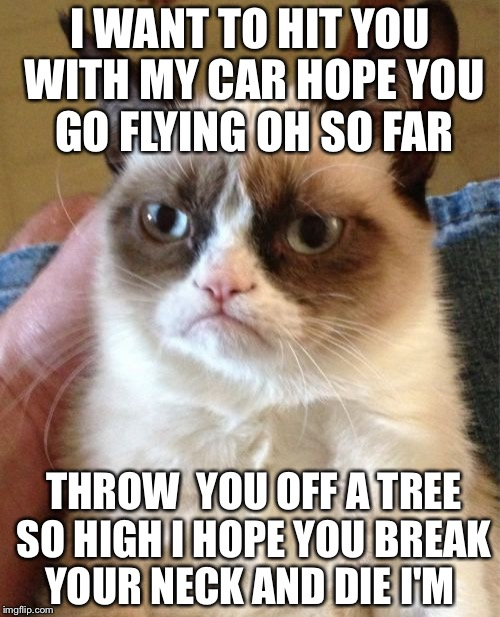 Grumpy Cat | I WANT TO HIT YOU WITH MY CAR HOPE YOU GO FLYING OH SO FAR THROW  YOU OFF A TREE SO HIGH I HOPE YOU BREAK YOUR NECK AND DIE I'M | image tagged in memes,grumpy cat | made w/ Imgflip meme maker