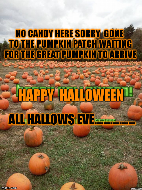 Image Tagged In Halloween Imgflip