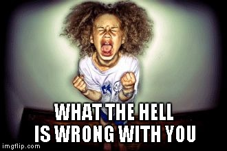 WHAT THE HELL IS WRONG WITH YOU | image tagged in yelling child | made w/ Imgflip meme maker