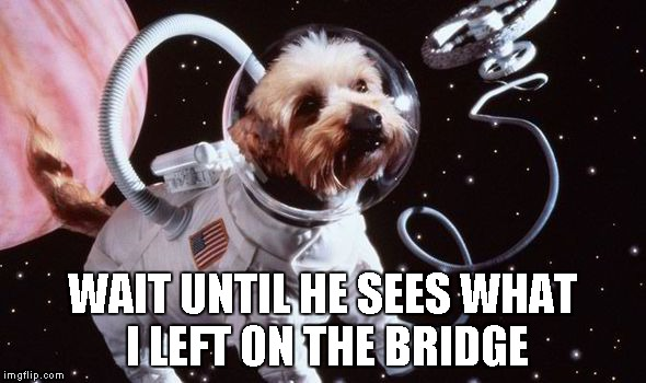 WAIT UNTIL HE SEES WHAT I LEFT ON THE BRIDGE | image tagged in dog in space | made w/ Imgflip meme maker