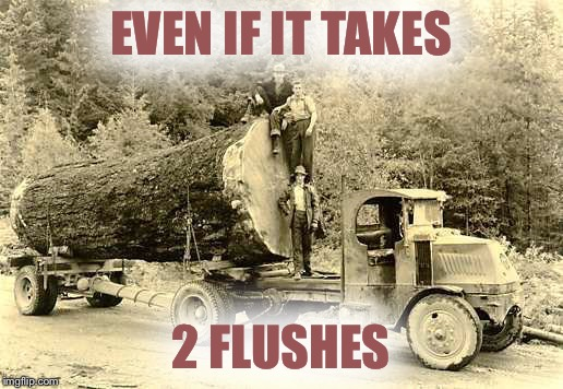 EVEN IF IT TAKES 2 FLUSHES | made w/ Imgflip meme maker