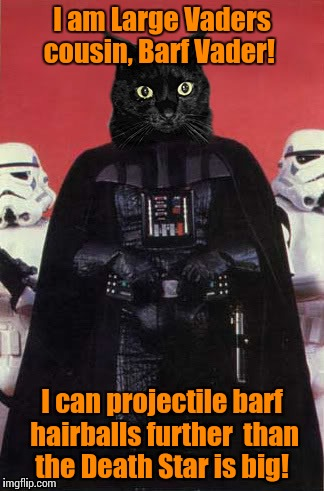 Darth cat #1 | I am Large Vaders cousin, Barf Vader! I can projectile barf hairballs further  than the Death Star is big! | image tagged in darth cat 1 | made w/ Imgflip meme maker