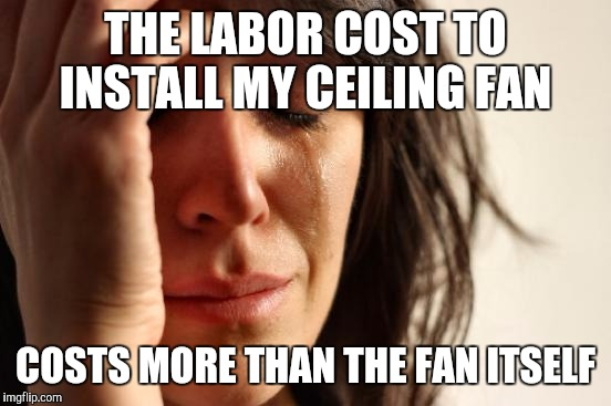 First World Problems Meme | THE LABOR COST TO INSTALL MY CEILING FAN COSTS MORE THAN THE FAN ITSELF | image tagged in memes,first world problems | made w/ Imgflip meme maker