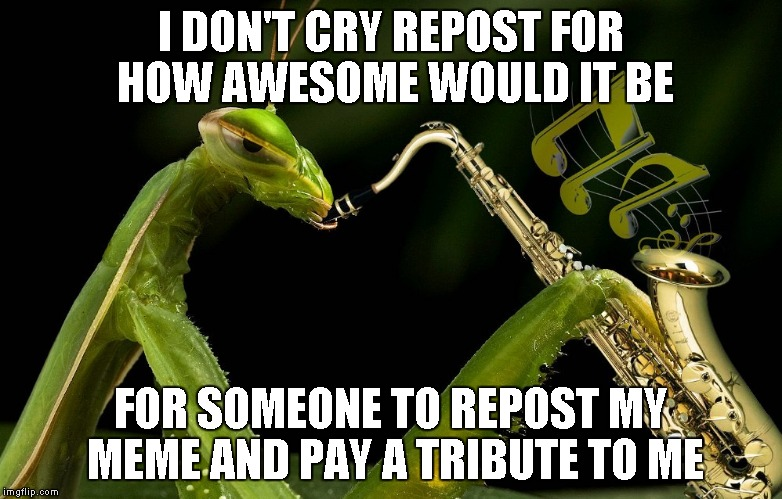 Everybody was doing it... | I DON'T CRY REPOST FOR HOW AWESOME WOULD IT BE FOR SOMEONE TO REPOST MY MEME AND PAY A TRIBUTE TO ME | image tagged in mantis playing sax,praying mantis,mantis,repost,funny | made w/ Imgflip meme maker