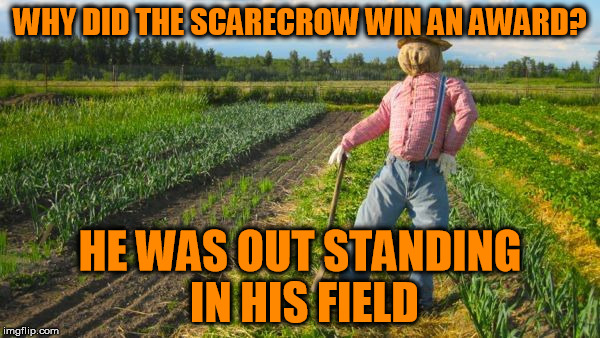 Bad Pun Scarecrow  | WHY DID THE SCARECROW WIN AN AWARD? HE WAS OUT STANDING IN HIS FIELD | image tagged in scarecrow in field,bad puns | made w/ Imgflip meme maker
