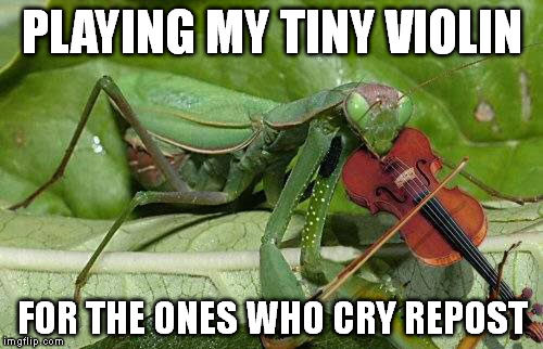 We live in a green world where everything is recycled and made into something better. | PLAYING MY TINY VIOLIN FOR THE ONES WHO CRY REPOST | image tagged in memes,mantis | made w/ Imgflip meme maker