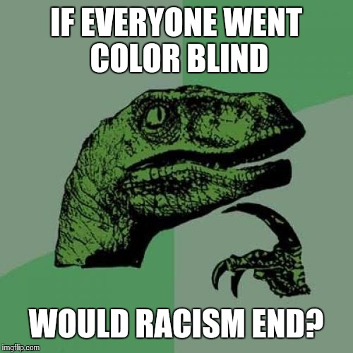 Philosoraptor Meme | IF EVERYONE WENT COLOR BLIND WOULD RACISM END? | image tagged in memes,philosoraptor | made w/ Imgflip meme maker