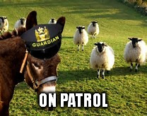 ON PATROL | made w/ Imgflip meme maker