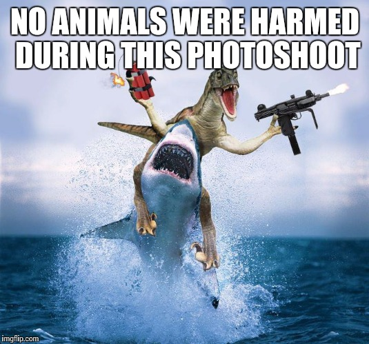 NO ANIMALS WERE HARMED DURING THIS PHOTOSHOOT | made w/ Imgflip meme maker
