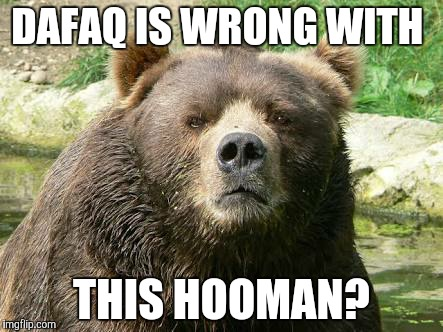 DAFAQ IS WRONG WITH THIS HOOMAN? | made w/ Imgflip meme maker
