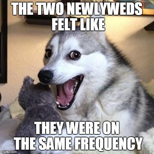 THE TWO NEWLYWEDS FELT LIKE THEY WERE ON THE SAME FREQUENCY | made w/ Imgflip meme maker