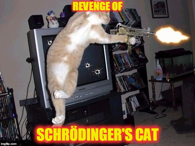 REVENGE OF SCHRÖDINGER'S CAT | made w/ Imgflip meme maker