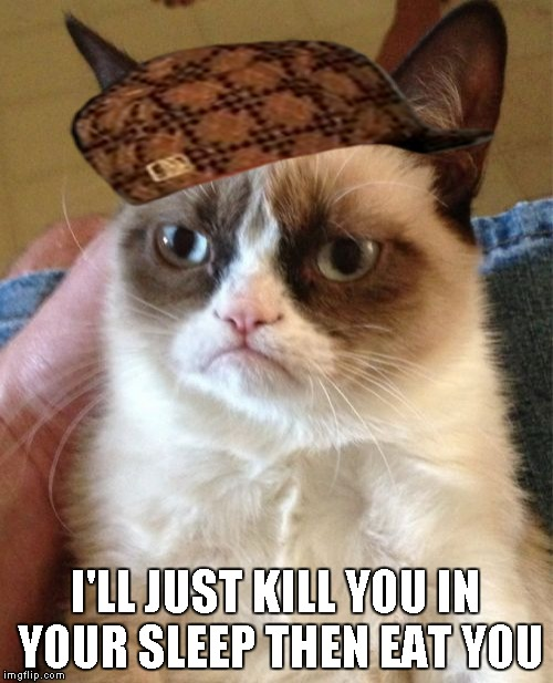 Grumpy Cat Meme | I'LL JUST KILL YOU IN YOUR SLEEP THEN EAT YOU | image tagged in memes,grumpy cat,scumbag | made w/ Imgflip meme maker