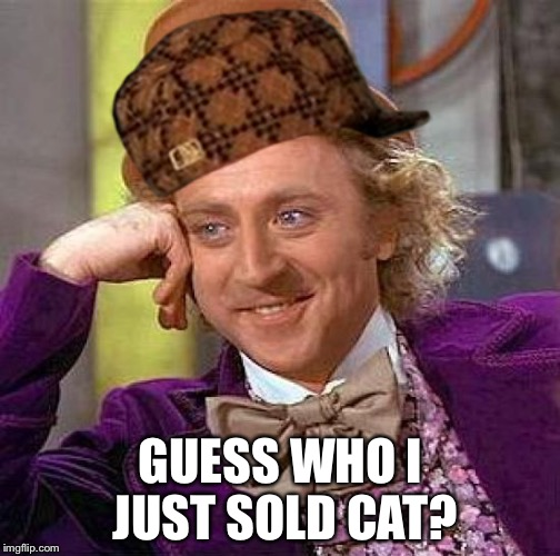 Creepy Condescending Wonka Meme | GUESS WHO I JUST SOLD CAT? | image tagged in memes,creepy condescending wonka,scumbag | made w/ Imgflip meme maker