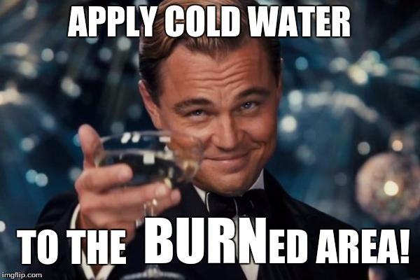 Leonardo Dicaprio Cheers Meme | APPLY COLD WATER TO THE BURN ED AREA! | image tagged in memes,leonardo dicaprio cheers | made w/ Imgflip meme maker