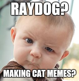 Skeptical Baby Meme | RAYDOG? MAKING CAT MEMES? | image tagged in memes,skeptical baby | made w/ Imgflip meme maker