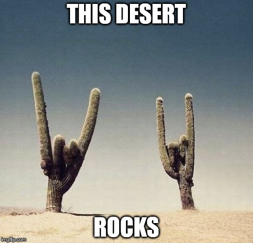 Cactii | THIS DESERT ROCKS | image tagged in cactii | made w/ Imgflip meme maker