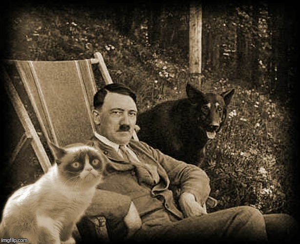 Grumpy Cat with Hitler | . | image tagged in grumpy cat with hitler | made w/ Imgflip meme maker