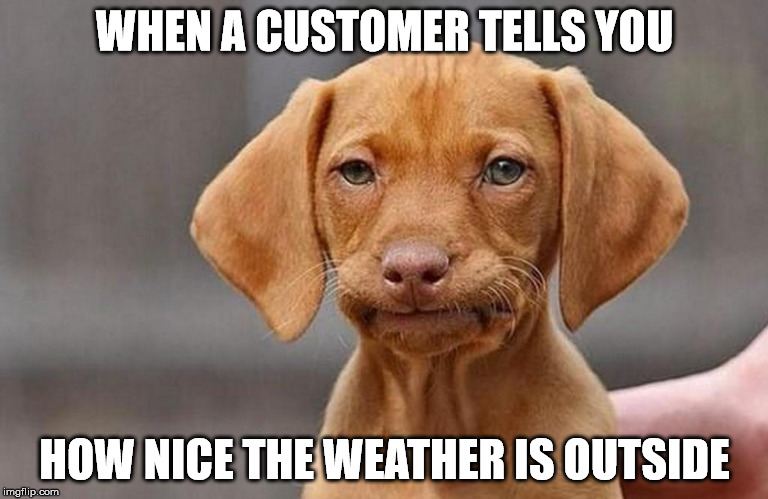 FedUpPup | WHEN A CUSTOMER TELLS YOU HOW NICE THE WEATHER IS OUTSIDE | image tagged in that face you make when | made w/ Imgflip meme maker