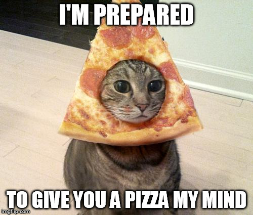 pizza cat | I'M PREPARED TO GIVE YOU A PIZZA MY MIND | image tagged in pizza cat | made w/ Imgflip meme maker