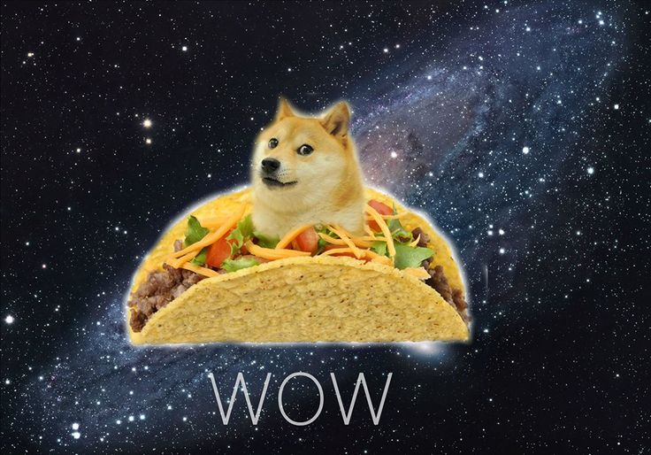 14011 doge in space - photo #31