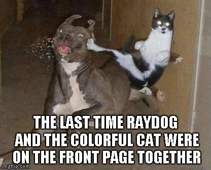 Cats and Dogs...the battle never ends | THE LAST TIME RAYDOG AND THE COLORFUL CAT WERE ON THE FRONT PAGE TOGETHER | image tagged in cat kicking dog,raydog,the colorful cat,funny,front page,animals | made w/ Imgflip meme maker